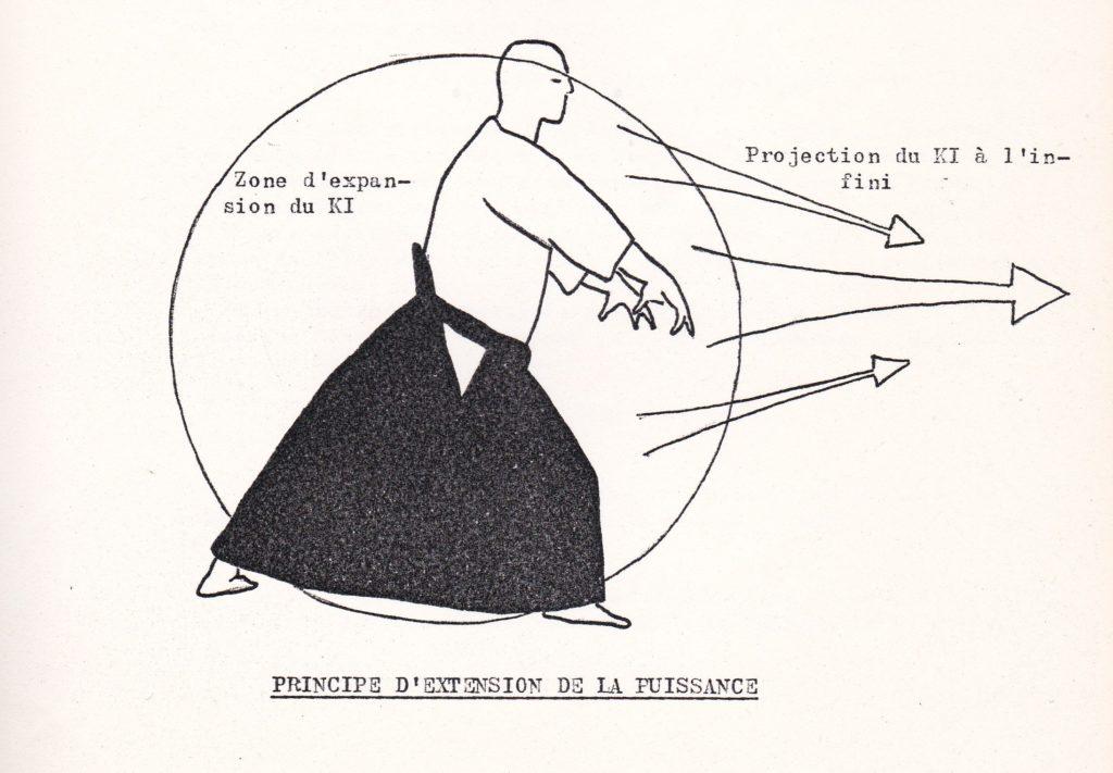 Schéma de l'extension de la puissance (dessin de Roberta Faulhaber).